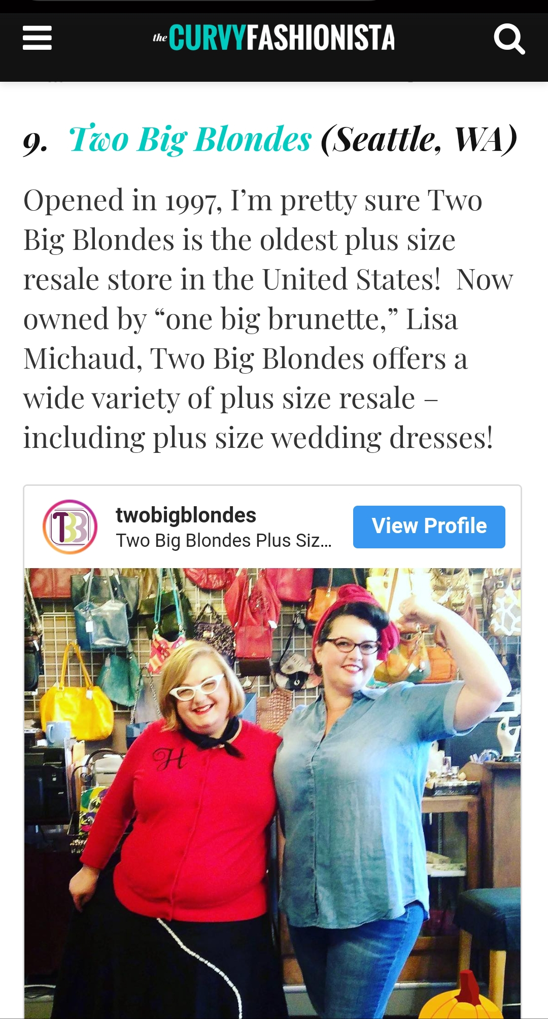 The Curvy Fashionist Plus Size Vintage & Thrift Stores